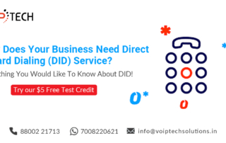 DID Service, Why Does Your Business Need Direct Inward Dialing (DID) Service? Everything You Would Like To Know About DID!, VoIP tech solutions, vici dialer, virtual number, Voip Providers, voip services in india, best sip provider, business voip providers, VoIP Phone Numbers, voip minutes provider, top voip providers, voip minutes, International VoIP Provider