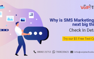 VoIP tech solutions, vici dialer, virtual number, Voip Providers, voip services in india, best sip provider, business voip providers, VoIP Phone Numbers, voip minutes provider, top voip providers, voip minutes, International VoIP Provider, SMS Marketing, Why is SMS Marketing the next big thing? Check In Details!