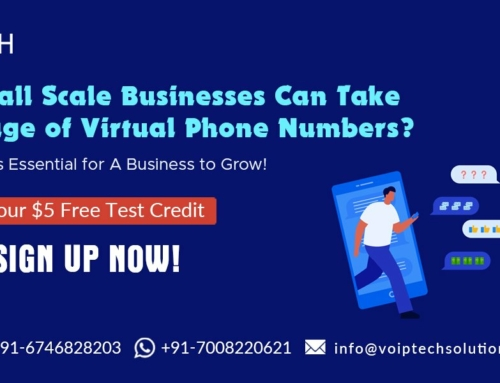How Small Scale Businesses Can Take Advantage of Virtual Phone Numbers? Know Why It is Essential for A Business to Grow!