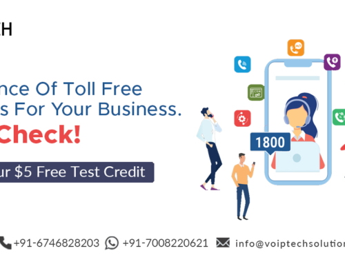 Importance Of Toll Free Numbers For Your Business. Must Check!