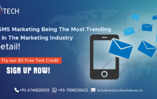 Bulk SMS Marketing Being The Most Trending Thing In The Marketing Industry. In Detail!