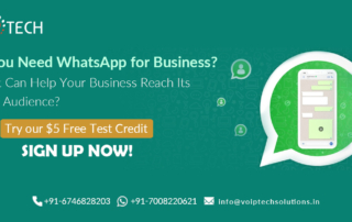 Do You Need WhatsApp for Business? How It Can Help Your Business Reach Its Target Audience? , VoIP tech solutions, vici dialer, virtual number, Voip Providers, voip services in india, best sip provider, business voip providers, VoIP Phone Numbers, voip minutes provider, top voip providers, voip minutes, International VoIP Provider