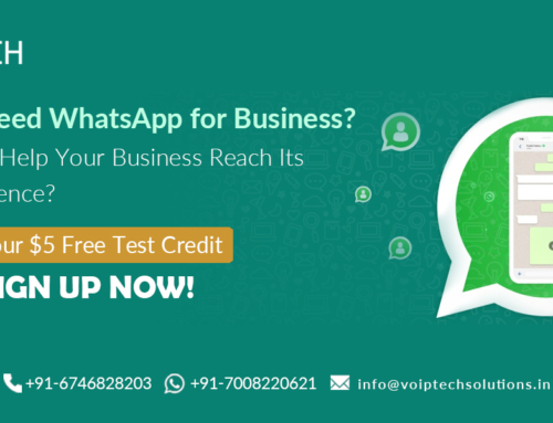 Do You Need WhatsApp for Business? How It Can Help Your Business Reach Its Target Audience?