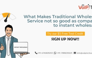 What Makes Traditional Wholesale Service not so good as compared to instant wholesale?
