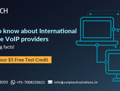 Things to know about international Wholesale VoIP Providers. 12 fascinating facts!
