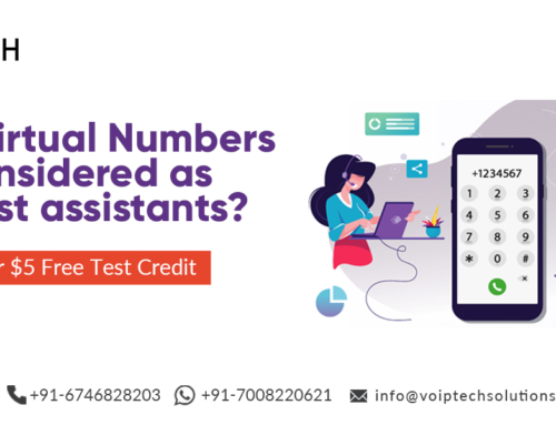 Why are Virtual Numbers considered as the best assistants?