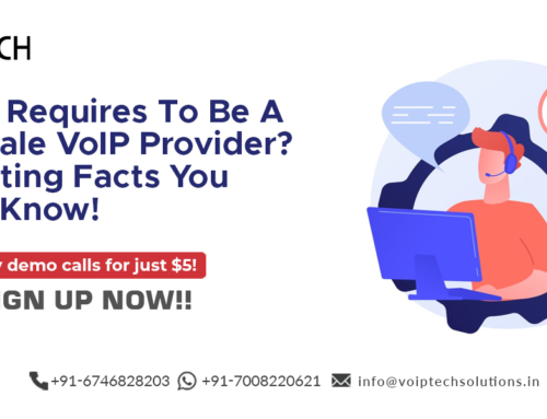 What It Requires To Be A Wholesale VoIP Provider? Fascinating Facts You Should Know!