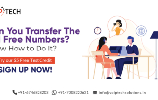 Can You Transfer The Toll Free Numbers? Know How to Do It? , VoIP tech solutions, vici dialer, virtual number, Voip Providers, voip services in india, best sip provider, business voip providers, VoIP Phone Numbers, voip minutes provider, top voip providers, voip minutes, International VoIP Provider