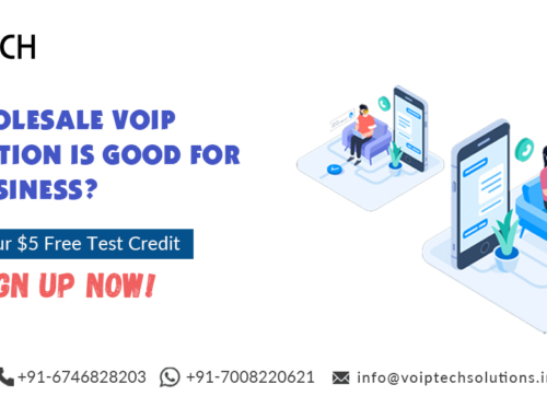 Why Wholesale VoIP Termination Is Good For Your Business?