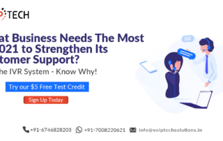 IVR System, What Business Needs The Most in 2021 to Strengthen Its Customer Support? Is it The IVR System - Know Why!, VoIP tech solutions, vici dialer, virtual number, Voip Providers, voip services in india, best sip provider, business voip providers, VoIP Phone Numbers, voip minutes provider, top voip providers, voip minutes, International VoIP Provider