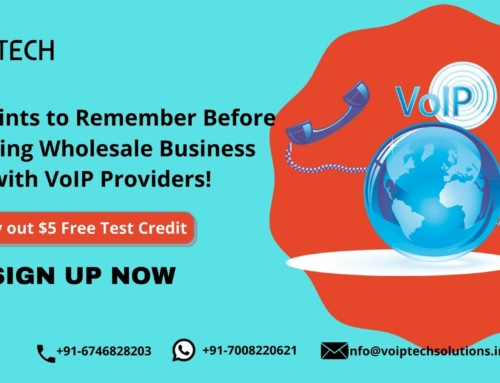 Key Points to Remember Before Starting Wholesale Business with VoIP Providers!