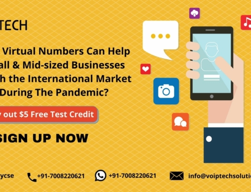 How Virtual Numbers Can Help Small & Mid-sized Businesses Reach the International Market During The Pandemic?